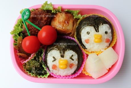 ペンギンさんのお弁当の写真素材 [FYI00234209]