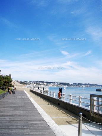 江ノ島ヨットハーバーの写真素材 [FYI00234713]