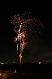 調布市花火大会 2012年 カラフルな大きな花火と小さな花火の写真素材 [FYI00234956]