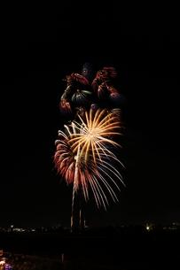 調布市花火大会 2012年 多数の小輪の花の写真素材 [FYI00234965]