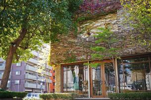 ツタ植物や樹木などの自然に囲まれた建物の写真素材 [FYI00234966]