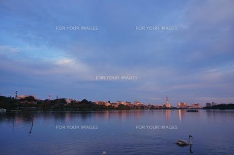 千波湖の夕暮れの写真素材 [FYI00234969]