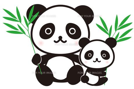 パンダの親子の写真素材 [FYI00235003]