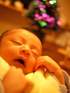 クリスマスツリーの前で眠る赤ちゃんの写真素材 [FYI00235064]