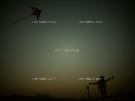 カイトを飛ばす飛ばす飛んでけの写真素材 [FYI00235103]