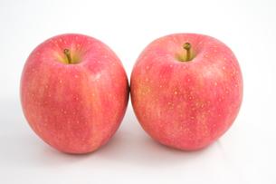 りんごの写真素材 [FYI00235185]