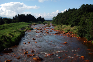 長瀬川の写真素材 [FYI00235510]