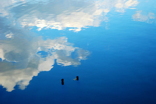 湖面の反射の素材 [FYI00235792]