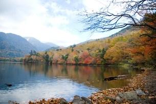 中禅寺湖の紅葉の写真素材 [FYI00235917]