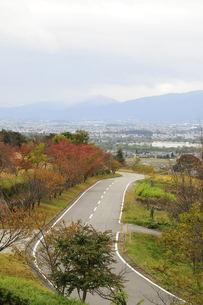 秋のあづみ野池田クラフトパ−クの道路の素材 [FYI00236508]