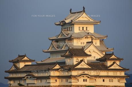 修理の終わった姫路城 夕刻 の写真素材 [FYI00236718]