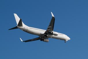Boeing 737-800の写真素材 [FYI00236785]
