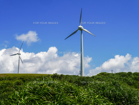 与那国島 東崎 風力発電所の写真素材 [FYI00236803]