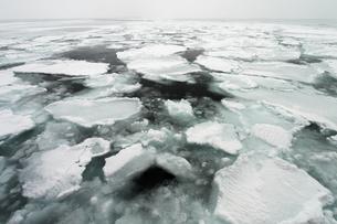 世界遺産 北海道 知床半島 流氷の素材 [FYI00236810]