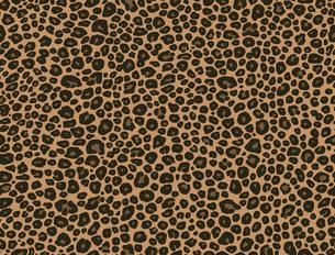 シームレスパターン・豹柄の写真素材 [FYI00236849]
