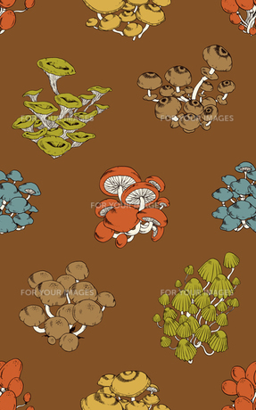 シームレスパターン・菌類群生の素材 [FYI00236855]