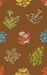 シームレスパターン・菌類群生の写真素材 [FYI00236855]