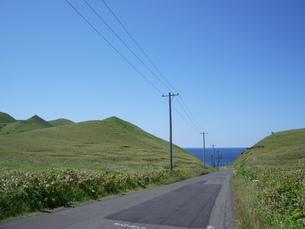 礼文・澄海岬界隈の素材 [FYI00236920]