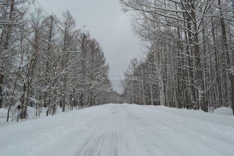 冬道の素材 [FYI00236956]