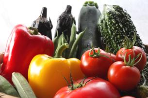 夏野菜の写真素材 [FYI00237263]