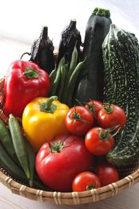 夏野菜の写真素材 [FYI00237268]