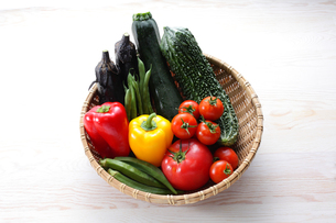 夏野菜の写真素材 [FYI00237272]