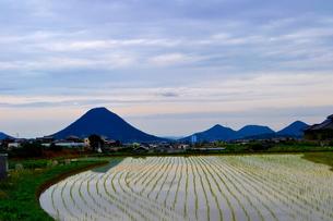 讃岐富士の写真素材 [FYI00237442]