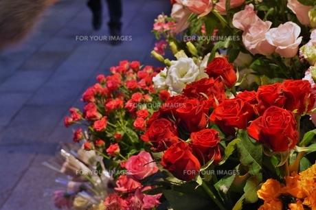 花屋の写真素材 [FYI00237572]