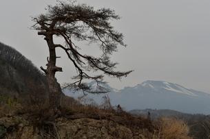 浅間山の写真素材 [FYI00237604]