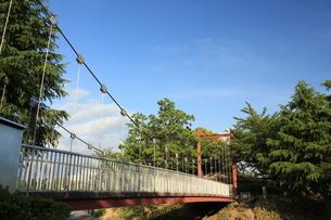 橋の写真素材 [FYI00237655]