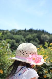 麦わら帽子の写真素材 [FYI00237700]