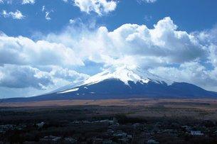 樹海越しにそびえる富士山の写真素材 [FYI00238067]