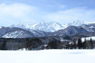 白馬の雪景色の写真素材 [FYI00238085]