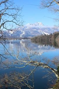 初冬の信州野尻湖の風景の素材 [FYI00238285]
