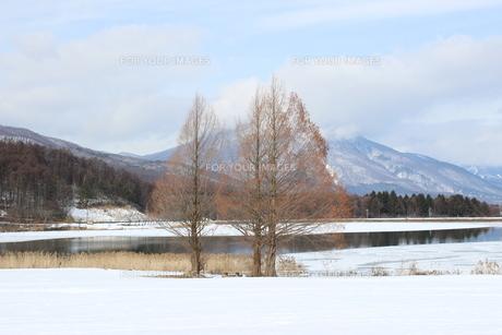 冬の信州霊仙寺湖の素材 [FYI00238291]