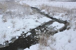 信州の雪降る河原の風景の素材 [FYI00238307]