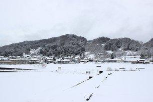 信州中条村の雪景色の素材 [FYI00238316]