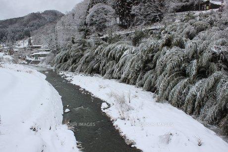 信州の田舎の中条村の雪景色の素材 [FYI00238319]