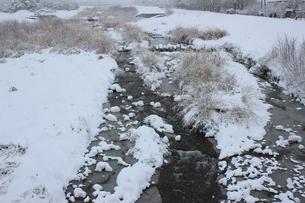 信州の田舎の河原の雪景色の素材 [FYI00238320]