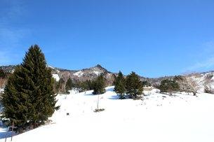信州の美しい山田牧場の風景の素材 [FYI00238407]