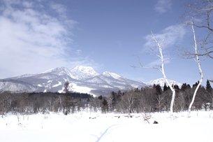 妙高高原の雪原風景の写真素材 [FYI00238422]