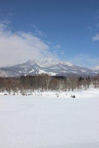 妙高高原の雪景色の写真素材 [FYI00238423]
