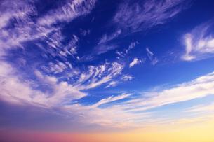 美ヶ原高原山頂の朝焼けに染まる雲の流れの写真素材 [FYI00238626]