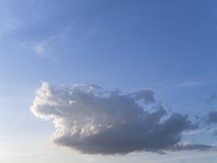 ガオーと吠える雲の写真素材 [FYI00238893]