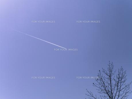 青空と飛行機雲の写真素材 [FYI00238915]