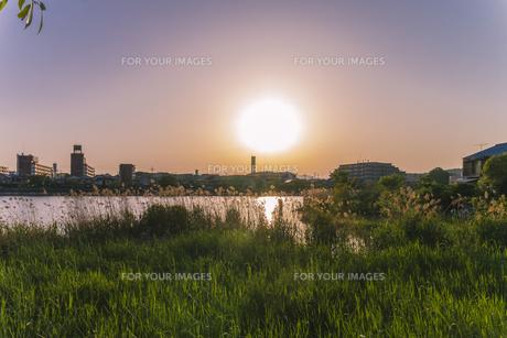 夕焼けと池の写真素材 [FYI00238920]