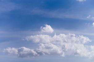 秋の青空の写真素材 [FYI00238929]