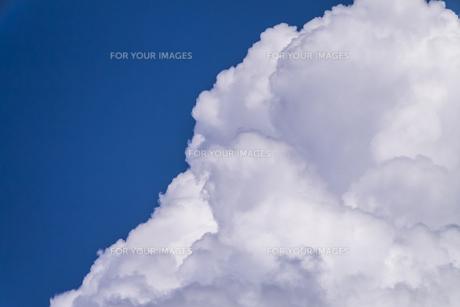 夏の青空の写真素材 [FYI00238943]