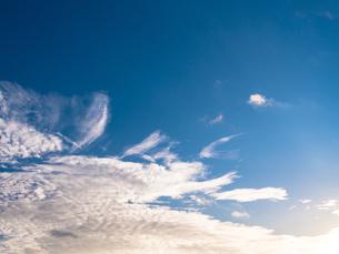 冬の青空の写真素材 [FYI00238951]