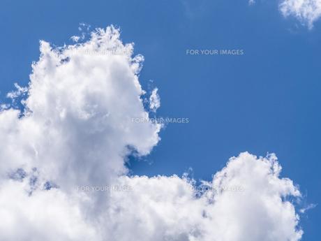 夏の青空の写真素材 [FYI00238979]